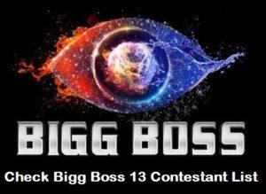 Bigg Boss 13 Contestants List 2019 - Check Final List and Wild Card Contestants List 1