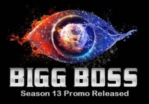 Big Boss 13 from Promo to Finale, BB13 Winner, Contestant List, Wild Card Contestants 7