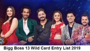 Bigg Boss 13 Wild Card Entry 2019 List - Check BB13 Wild Card Contestants Name & Bio 1